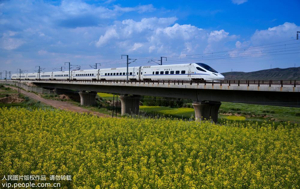 兰新高铁动车穿越最美油菜花海【2】