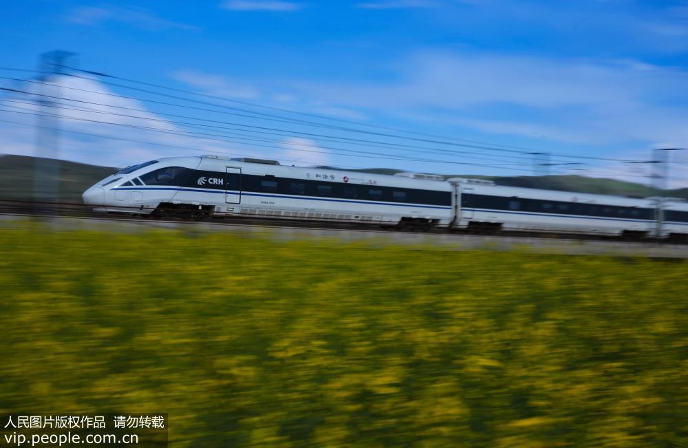 兰新高铁动车穿越最美油菜花海【4】