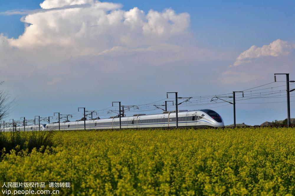 兰新高铁动车穿越最美油菜花海【5】
