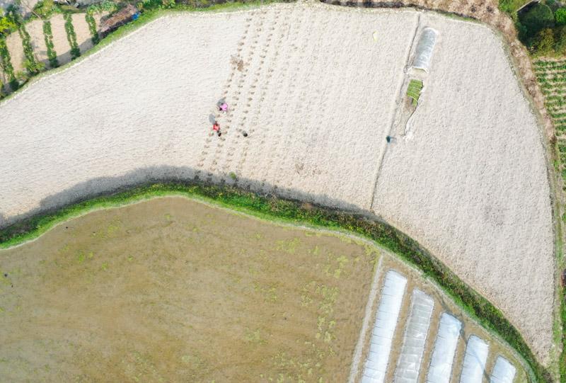 重庆武隆:春暖农事忙